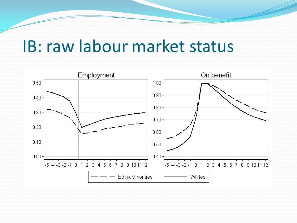 IB: raw labour market status