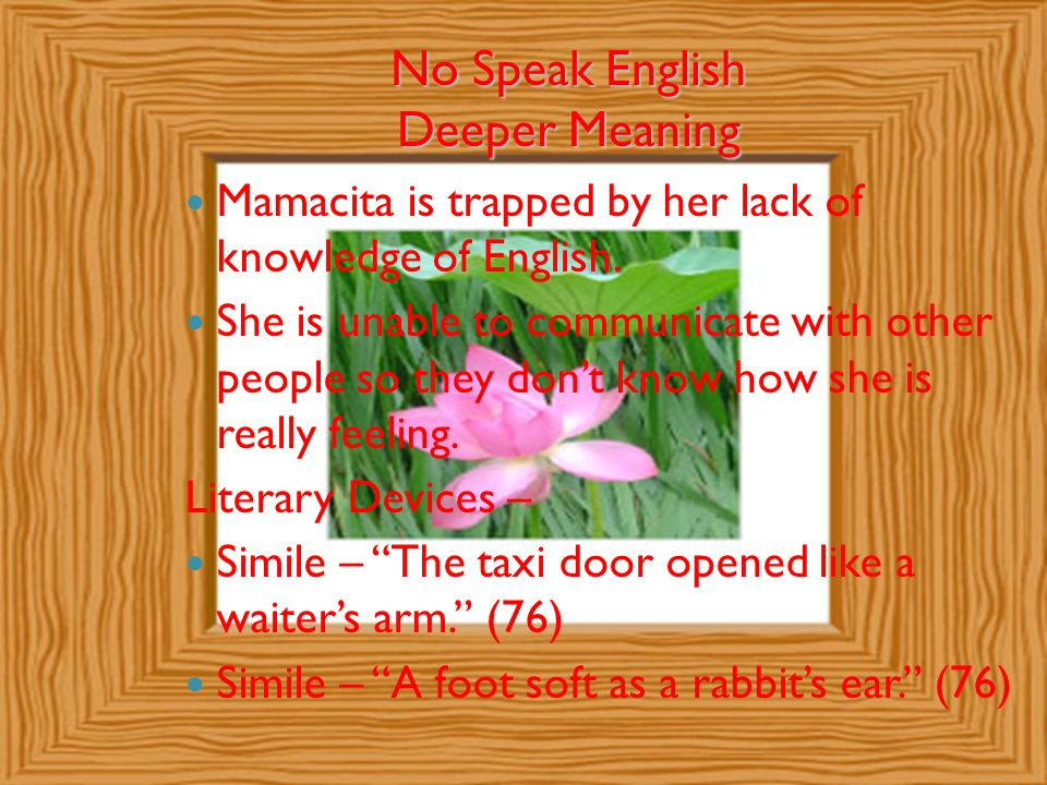 No Speak English Deeper Meaning Mamacita is trapped by her lack of knowledge of English. She is unable to communicate with other people so they don't