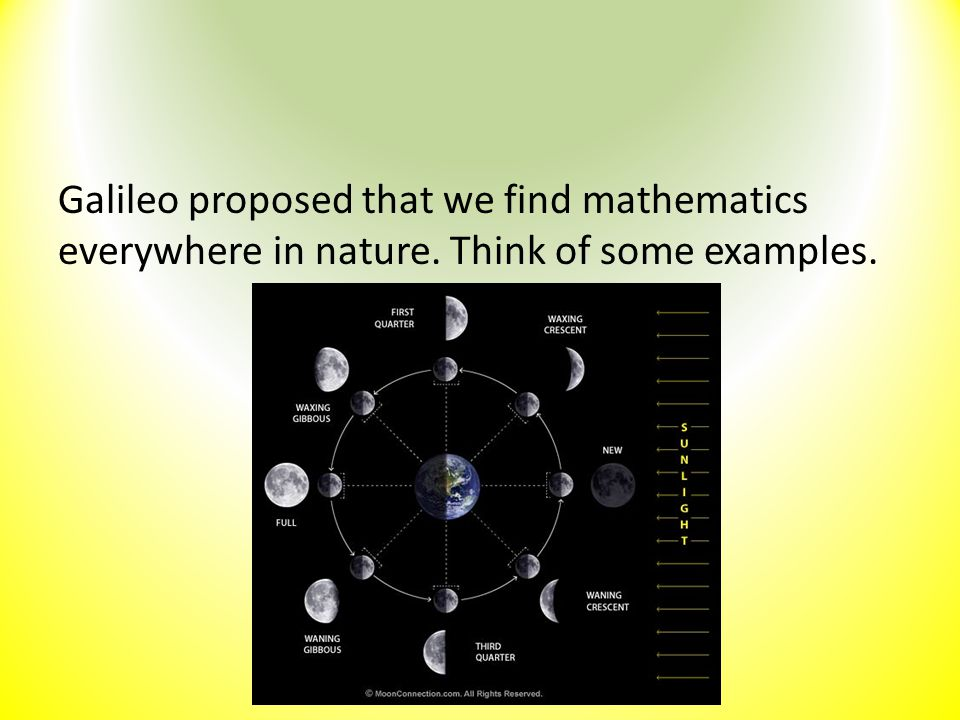 Galileo proposed that we find mathematics everywhere in nature. Think of some examples.