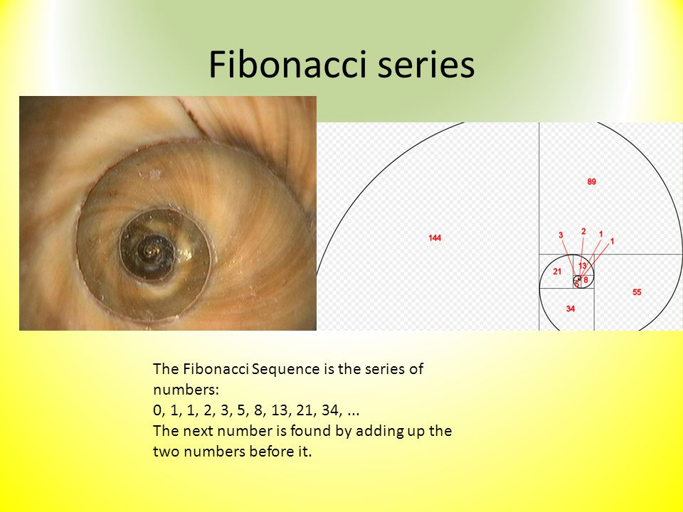 Fibonacci series The Fibonacci Sequence is the series of numbers: 0, 1, 1, 2, 3, 5, 8, 13, 21, 34,... The next number is found by adding up the two nu