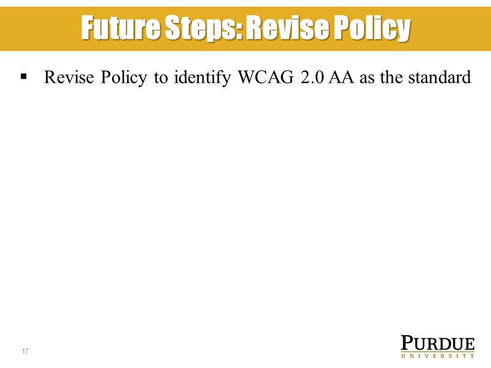 Future Steps: Revise Policy  Revise Policy to identify WCAG 2.0 AA as the standard 17