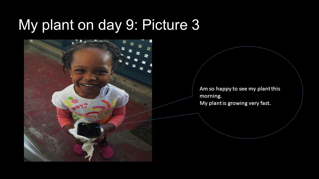 Am so happy to see my plant this morning. My plant is growing very fast. My plant on day 9: Picture 3