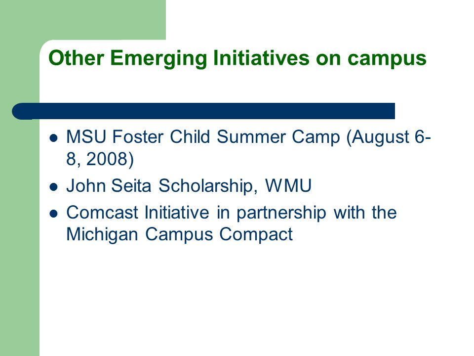 Other Emerging Initiatives on campus MSU Foster Child Summer Camp (August 6- 8, 2008) John Seita Scholarship, WMU Comcast Initiative in partnership wi