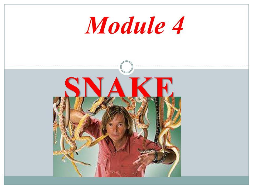 SNAKE MAN Module 4