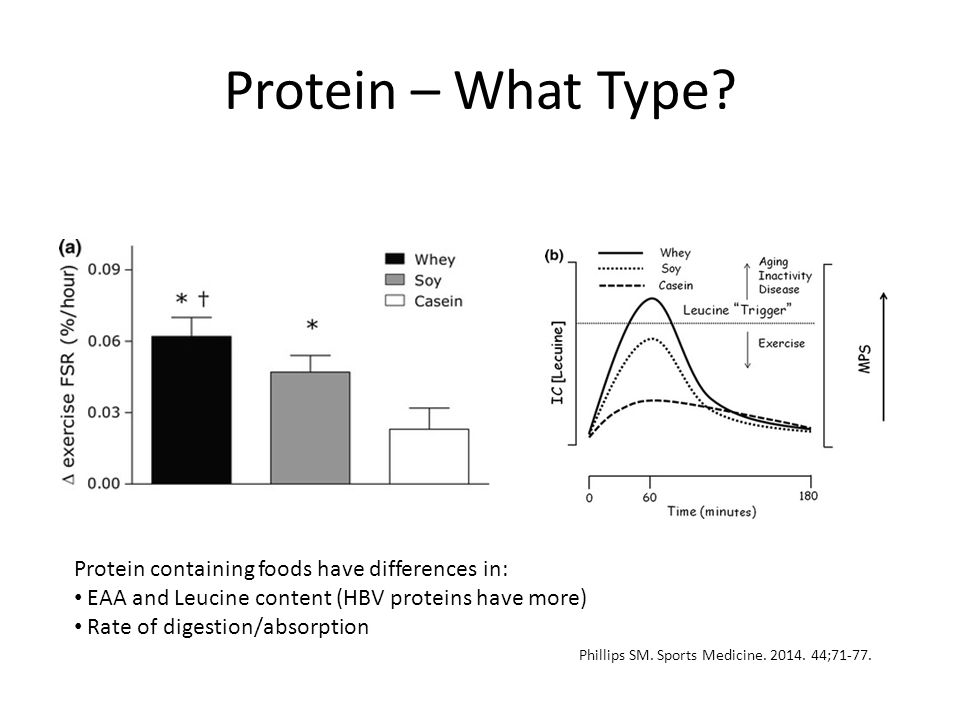 Protein – What Type? Protein containing foods have differences in: EAA and Leucine content (HBV proteins have more) Rate of digestion/absorption Phill