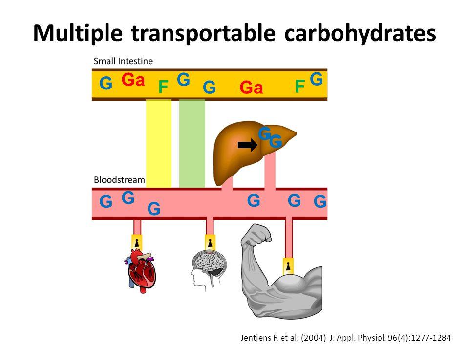 G Ga F G G F G G G G G G G G G G G Multiple transportable carbohydrates Jentjens R et al.