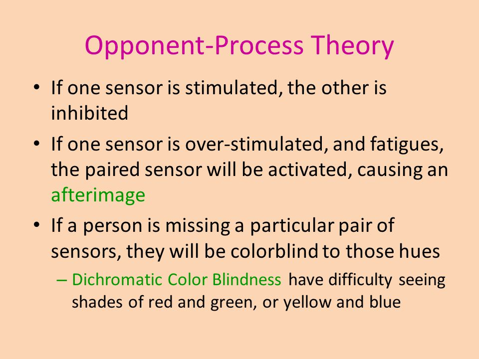 Opponent-Process Theory If one sensor is stimulated, the other is inhibited If one sensor is over-stimulated, and fatigues, the paired sensor will be