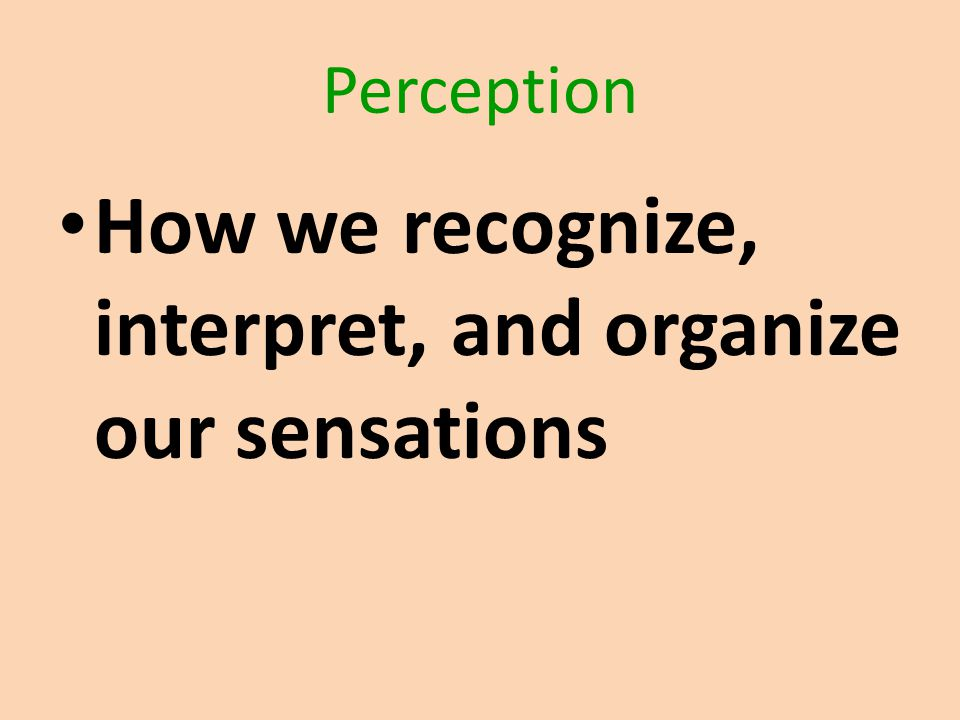 Perception How we recognize, interpret, and organize our sensations