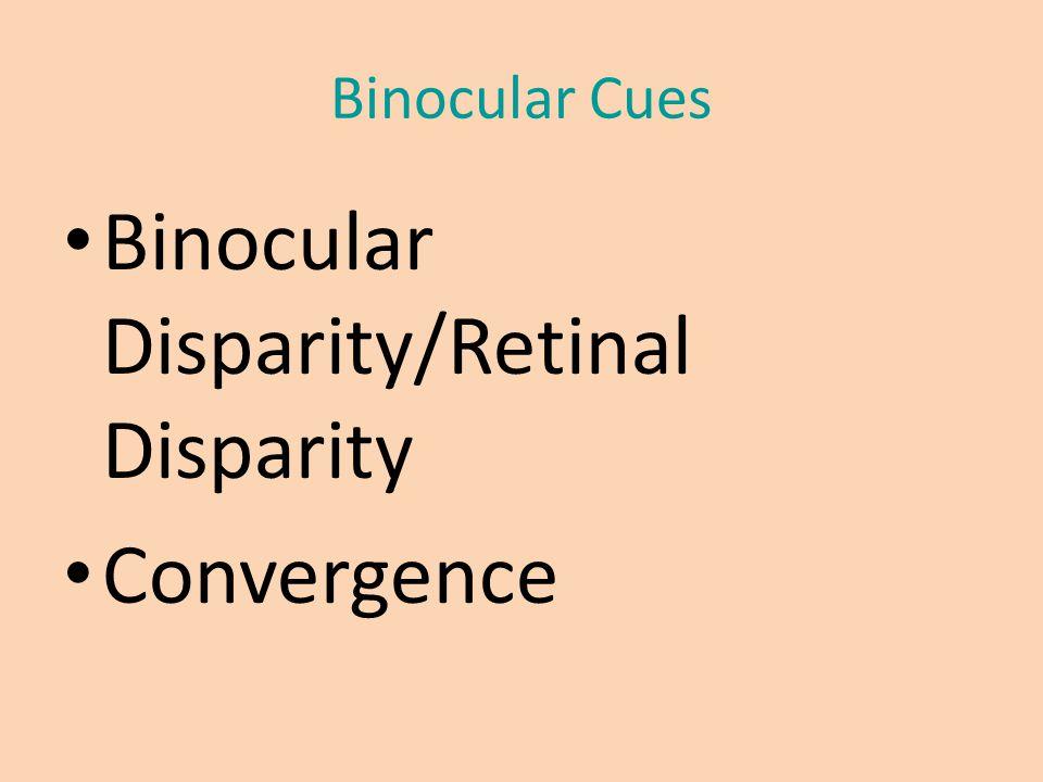 Binocular Cues Binocular Disparity/Retinal Disparity Convergence