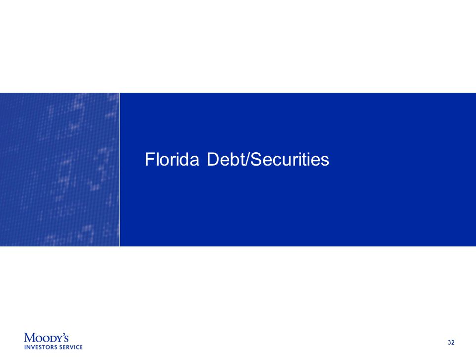 32 Florida Debt/Securities