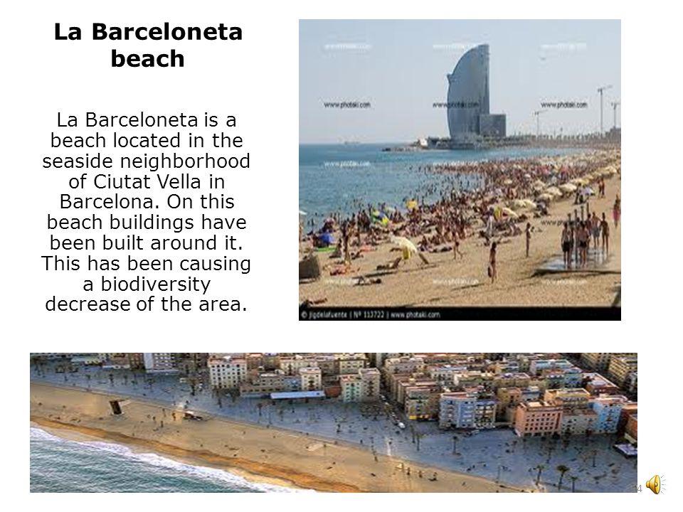 Algarrobico Beach It is in the Natural Park of the Cape of Gata-Níjar, Almería.