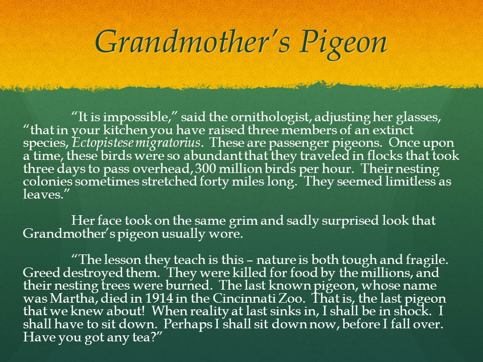 """Grandmother's Pigeon """"It is impossible,"""" said the ornithologist, adjusting her glasses, """"that in your kitchen you have raised three members of an exti"""