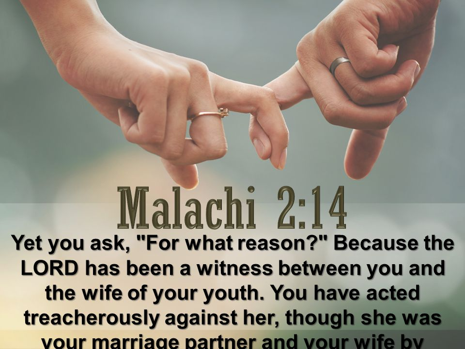 Yet you ask, For what reason? Because the LORD has been a witness between you and the wife of your youth.