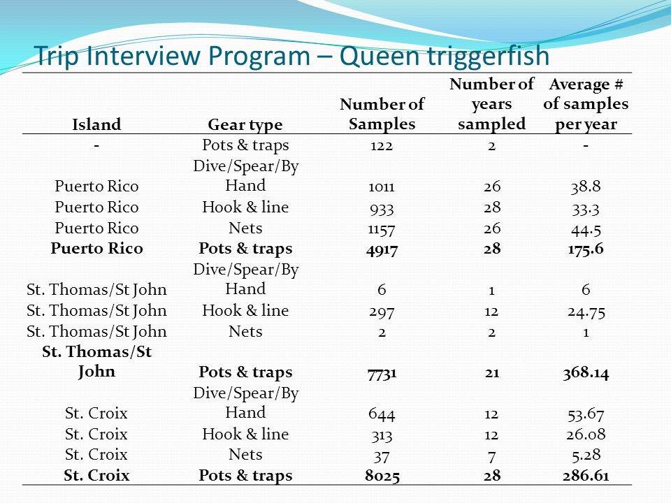 Trip Interview Program – Queen triggerfish IslandGear type Number of Samples Number of years sampled Average # of samples per year -Pots & traps1222- Puerto Rico Dive/Spear/By Hand10112638.8 Puerto RicoHook & line9332833.3 Puerto RicoNets11572644.5 Puerto RicoPots & traps491728175.6 St.