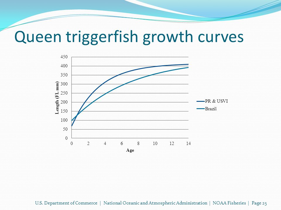 Queen triggerfish growth curves U.S.