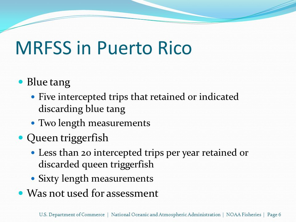MRFSS in Puerto Rico Blue tang Five intercepted trips that retained or indicated discarding blue tang Two length measurements Queen triggerfish Less than 20 intercepted trips per year retained or discarded queen triggerfish Sixty length measurements Was not used for assessment U.S.