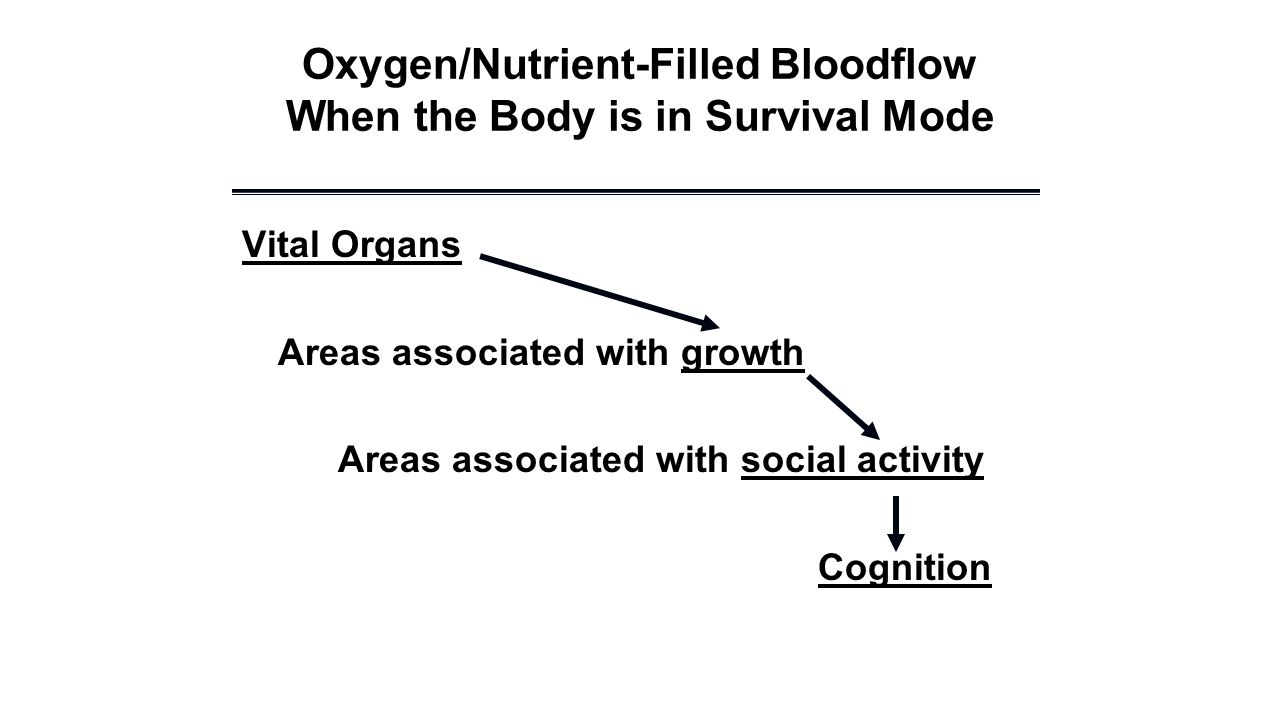 Oxygen/Nutrient-Filled Bloodflow When the Body is in Survival Mode Vital Organs Areas associated with growth Areas associated with social activity Cognition