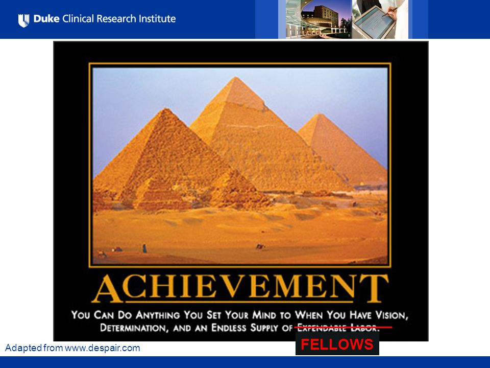 All Rights Reserved, Duke Medicine 2007 Adapted from www.despair.com FELLOWS