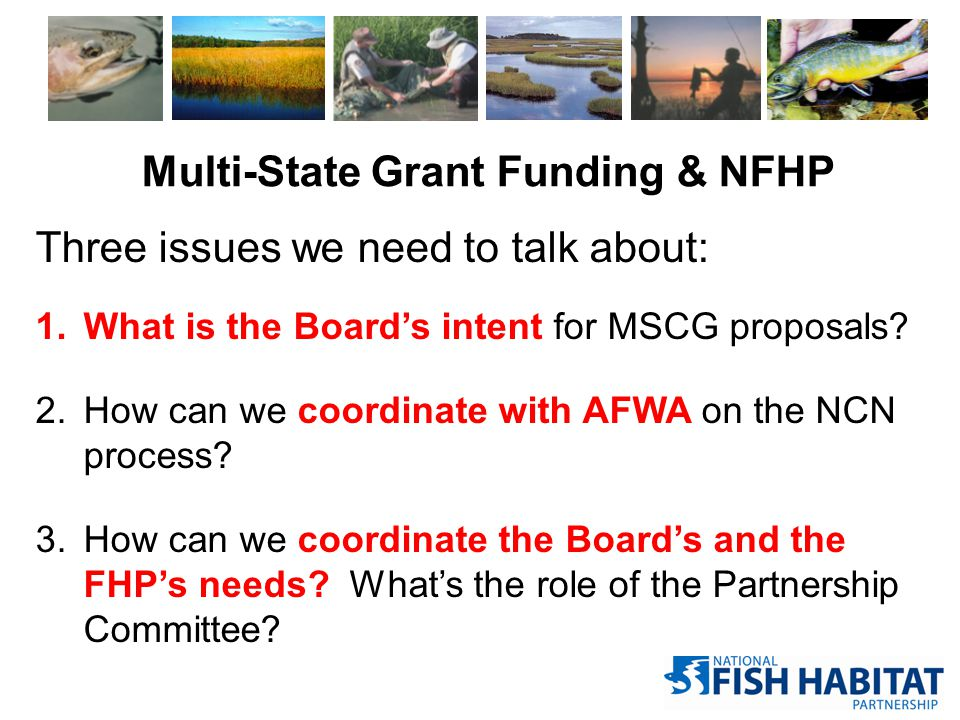 Multi-State Grant Funding & NFHP Three issues we need to talk about: 1.What is the Board's intent for MSCG proposals? 2.How can we coordinate with AFW