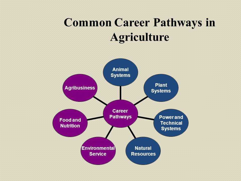 Career Pathways Animal Systems Plant Systems Power and Technical Systems Natural Resources Environmental Service Food and Nutrition Agribusiness Commo