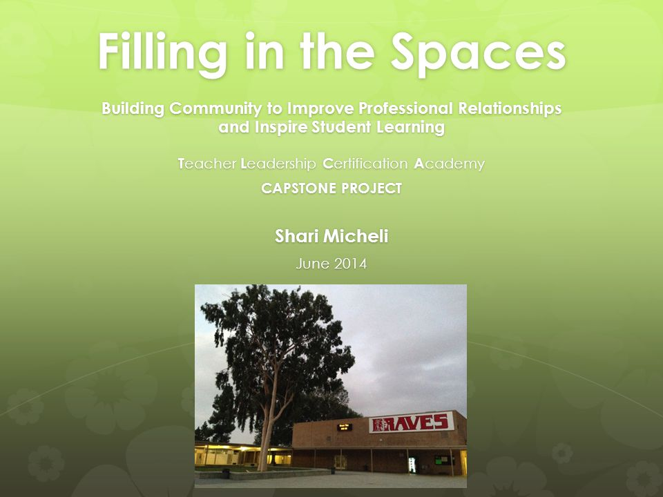 Filling in the Spaces Building Community to Improve Professional Relationships and Inspire Student Learning T eacher L eadership C ertification A cademy CAPSTONE PROJECT Shari Micheli June 2014