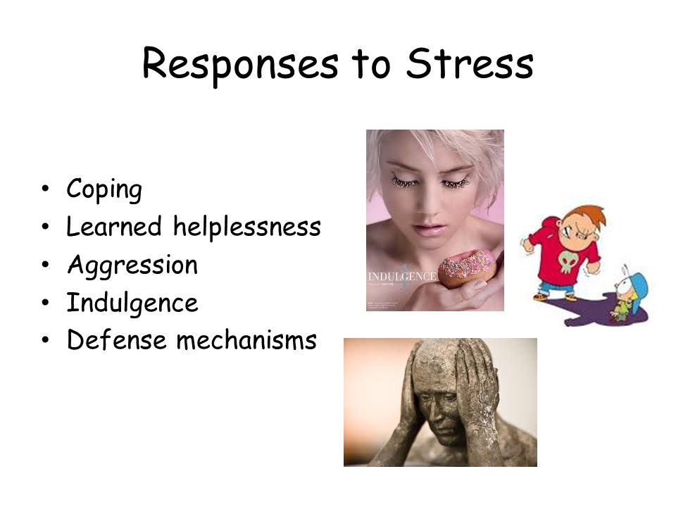 Responses to Stress Coping Learned helplessness Aggression Indulgence Defense mechanisms