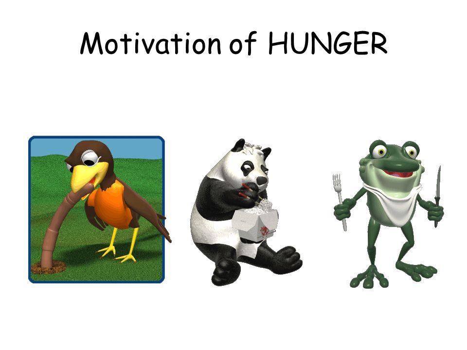 Motivation of HUNGER