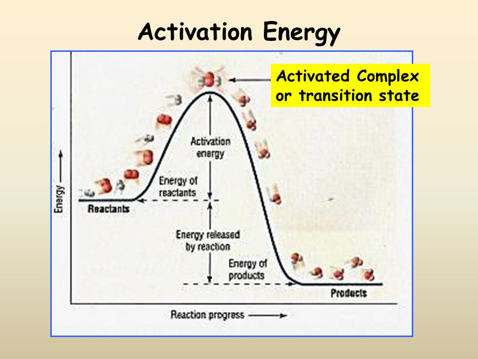 Activation Energy The minimum energy required to transform reactants into the activated complex (also known as the transition state) (The minimum energy required to produce an effective collision) Flame, spark, high temperature, radiation are all sources of activation energy