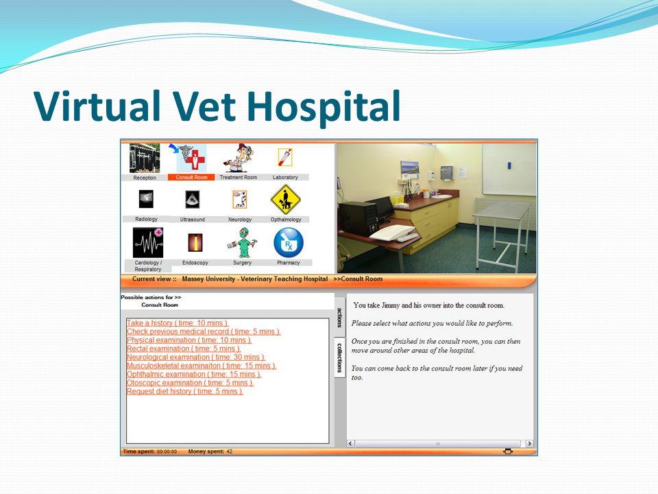Virtual Vet Hospital