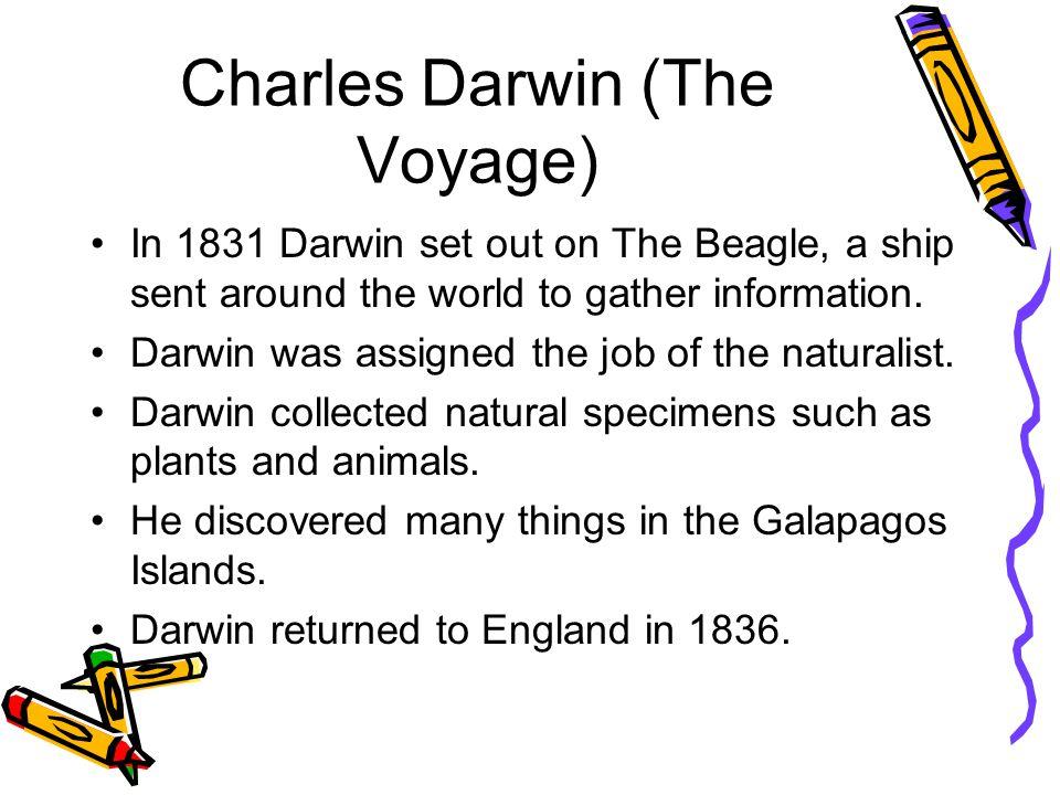 The HMS Beagle