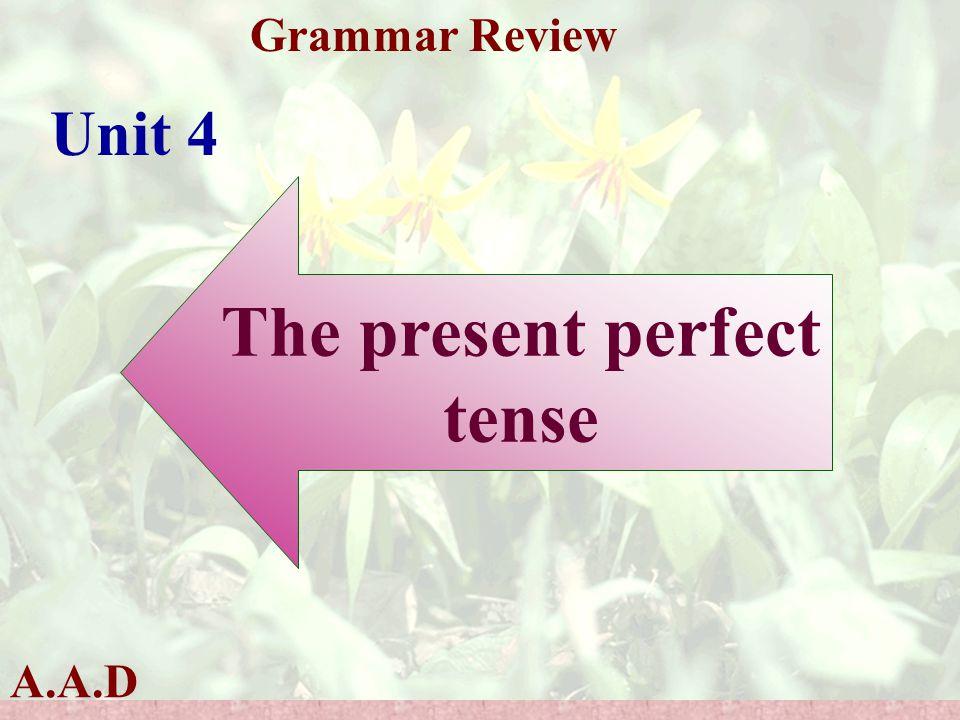 A.A.D Grammar Review Unit 4 The present perfect tense