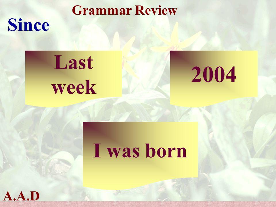 A.A.D Grammar Review Last week 2004 I was born Since