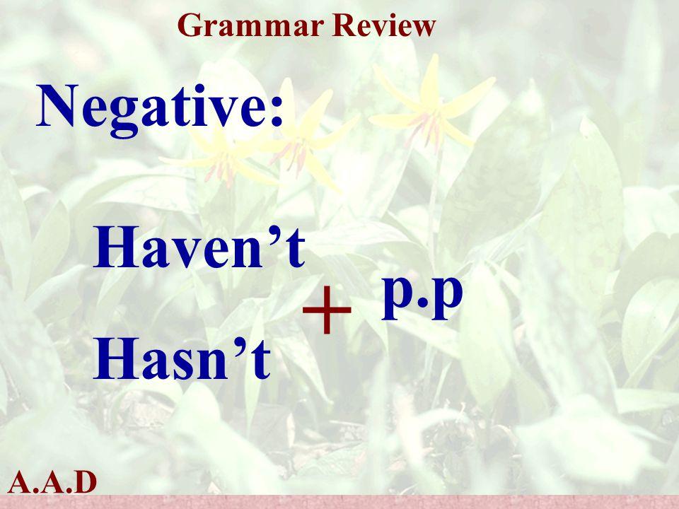 A.A.D Grammar Review Negative: Haven't Hasn't + p.p