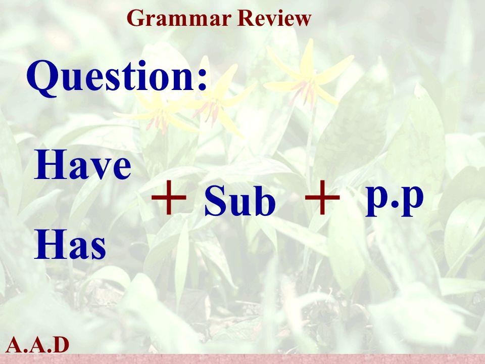 A.A.D Grammar Review Question: Have Has + Sub + p.p