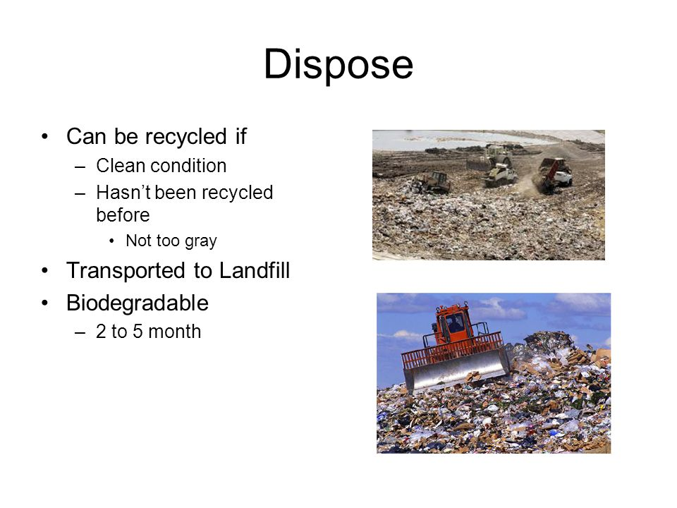 Dispose Can be recycled if –Clean condition –Hasn't been recycled before Not too gray Transported to Landfill Biodegradable –2 to 5 month