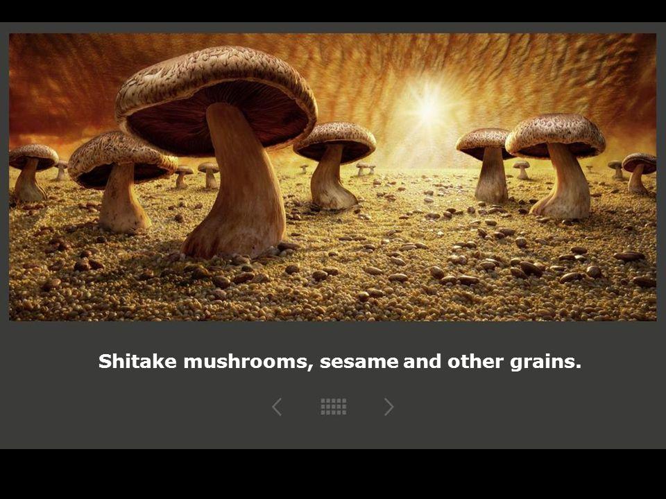 Shitake mushrooms, sesame and other grains.