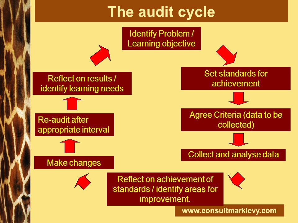 www.consultmarklevy.com The audit cycle Identify Problem / Learning objective Set standards for achievement Collect and analyse data Reflect on achiev