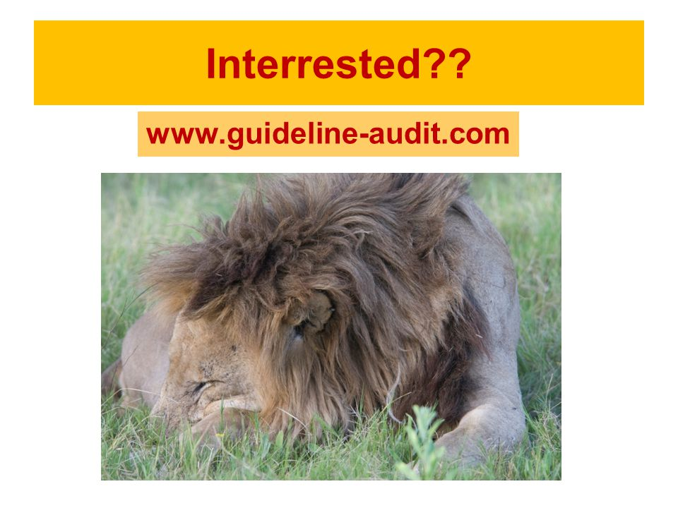 Interrested?? www.guideline-audit.com