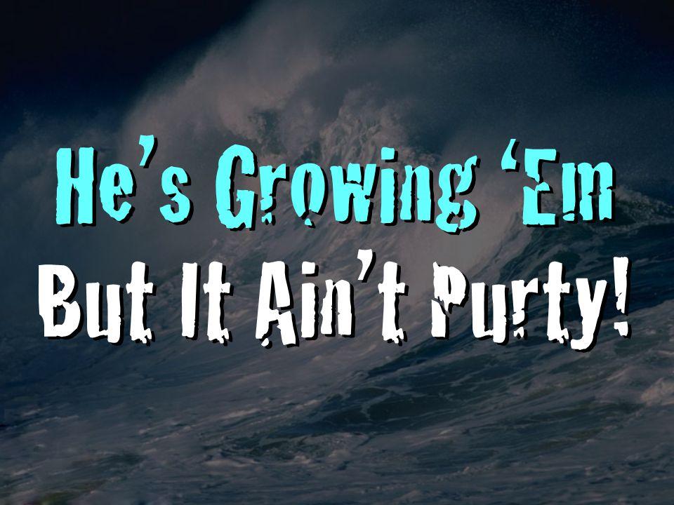 He's Growing 'Em But It Ain't Purty! He's Growing 'Em But It Ain't Purty!
