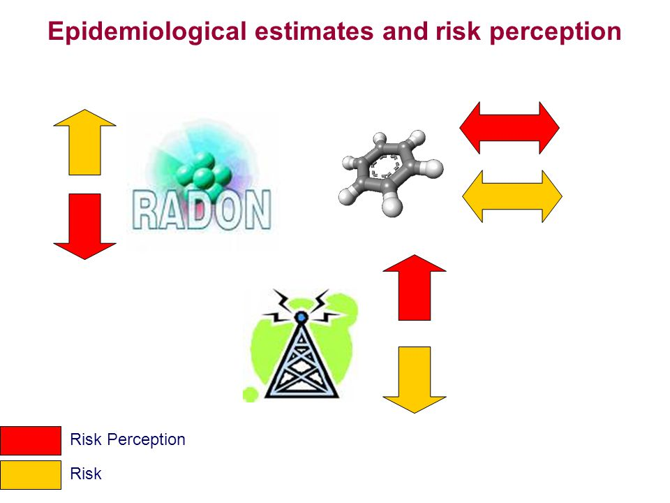 Epidemiological estimates and risk perception Risk Perception Risk