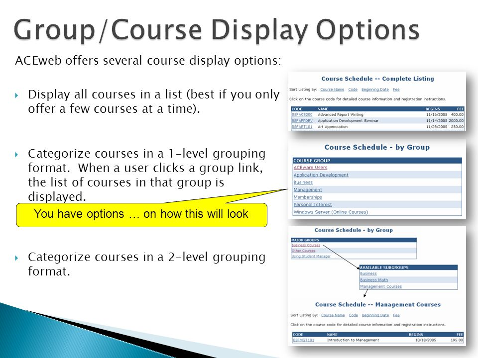 ACEweb offers several course display options:  Display all courses in a list (best if you only offer a few courses at a time).  Categorize courses i