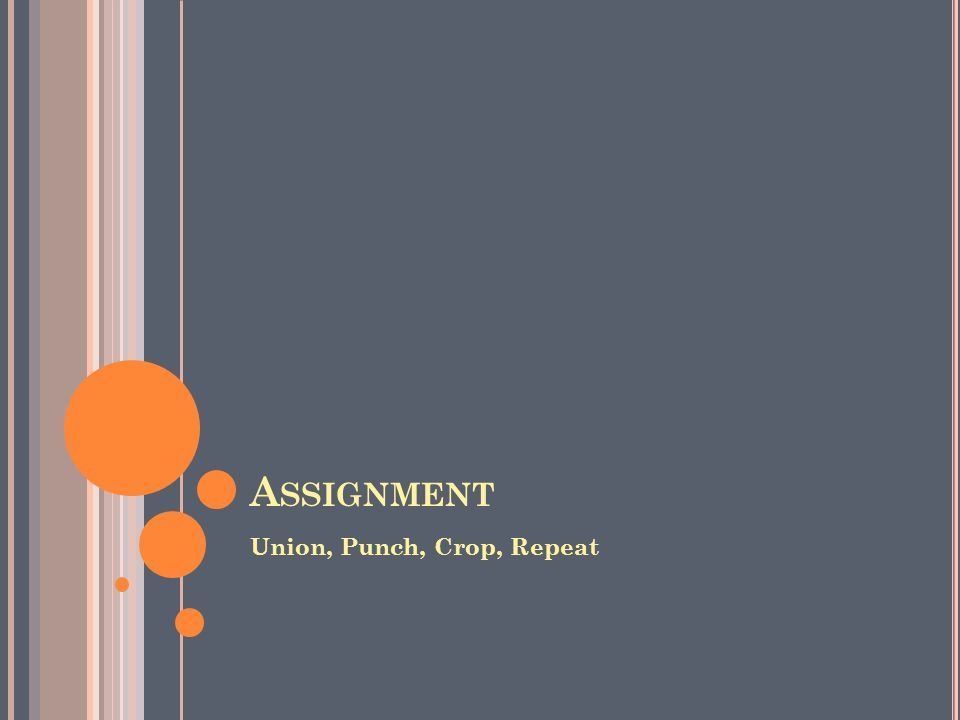 A SSIGNMENT Union, Punch, Crop, Repeat