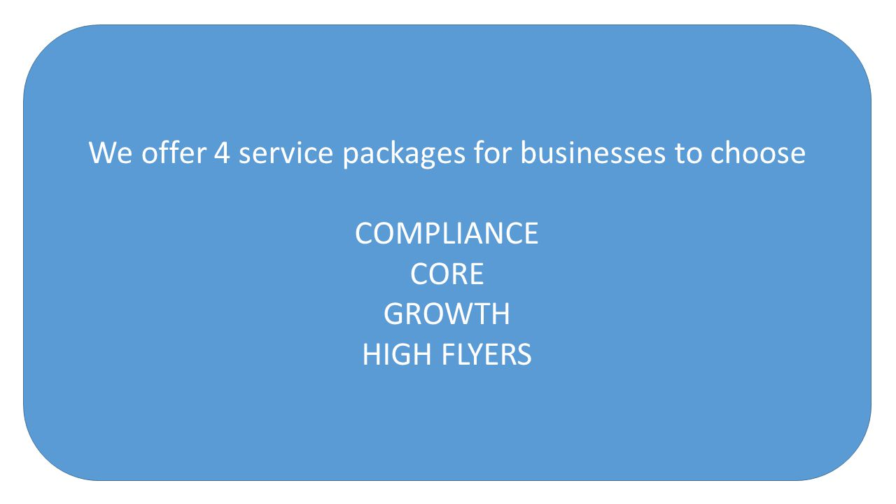 We offer 4 service packages for businesses to choose COMPLIANCE CORE GROWTH HIGH FLYERS