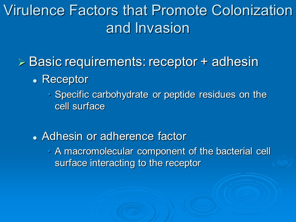  Surface proteins called adhesins in the bacterial cell wall bind to receptor molecules on the surface of a susceptible host cell enabling the bacterium to make intimate contact with the host cell, adhere, colonize, and resist flushing.