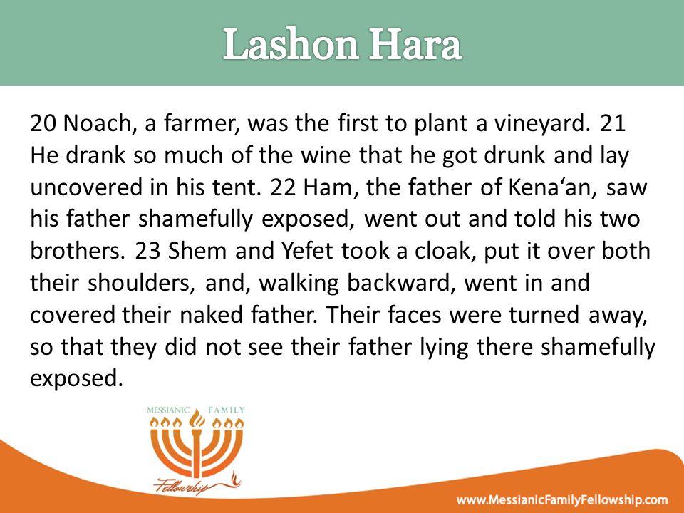20 Noach, a farmer, was the first to plant a vineyard.