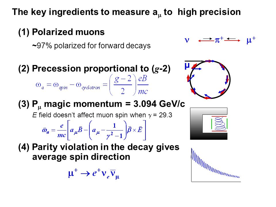 The key ingredients to measure a  to high precision (1) Polarized muons ~97% polarized for forward decays (2) Precession proportional to ( g -2) (3) P  magic momentum = 3.094 GeV/c E field doesn't affect muon spin when  = 29.3 (4) Parity violation in the decay gives average spin direction     µ
