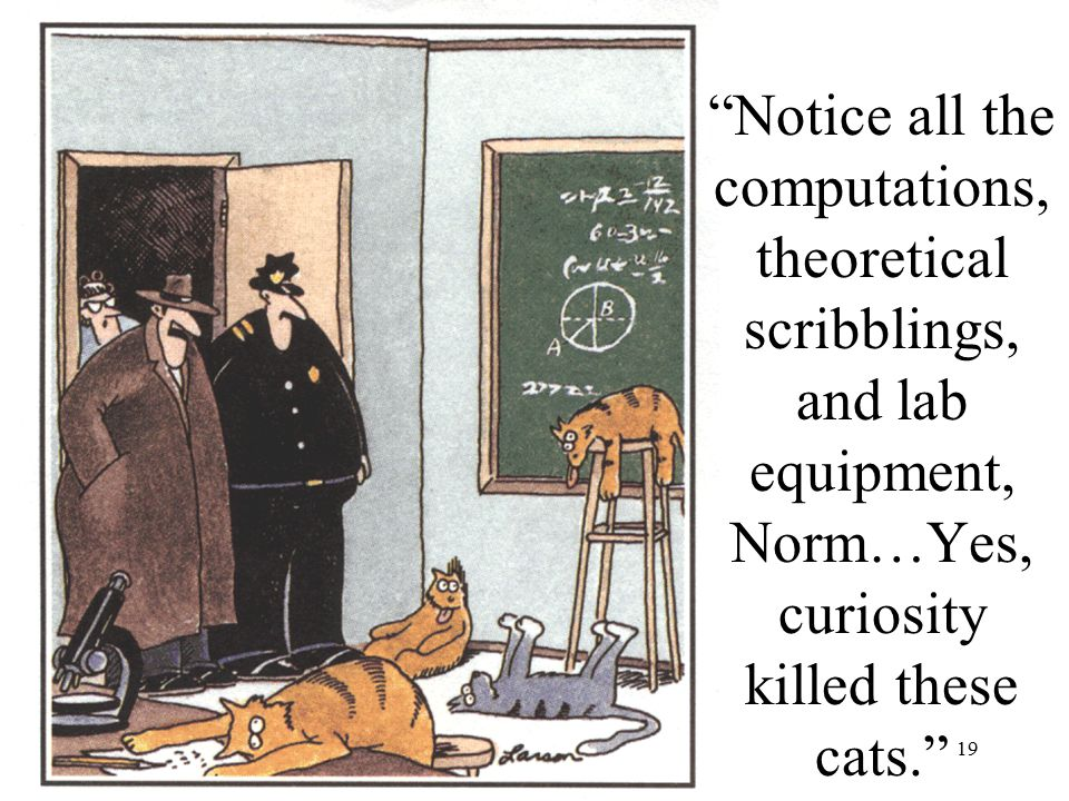 "19 Farside Cartoon: G. Larson ""Notice all the computations, theoretical scribblings, and lab equipment, Norm…Yes, curiosity killed these cats."""