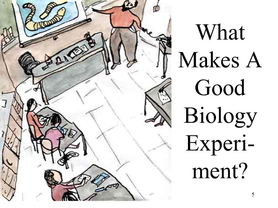 5 What Makes A Good Biology Experi- ment?