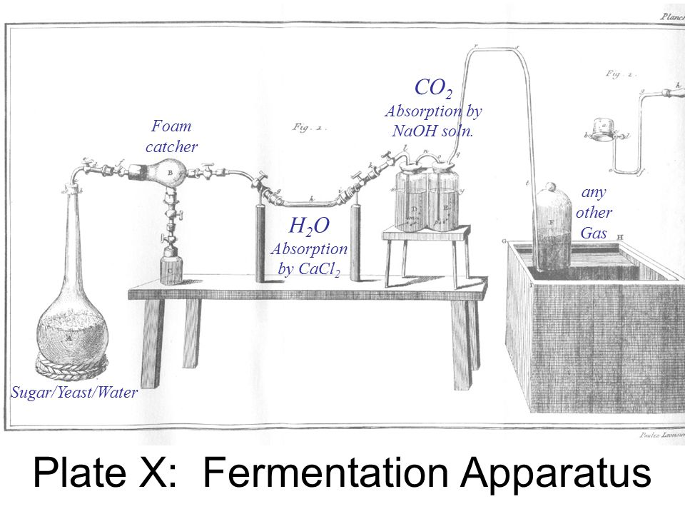 I can consider the materials subjected to fermentation and the products of fermen- tation as an algebraic equation; and by in turn supposing each of the elements of this equation to be unknown, I can derive a value and thus correct experiment by calculation and calculation by experi- ment.