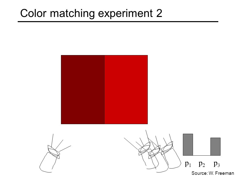 Color matching experiment 2 p 1 p 2 p 3 Source: W. Freeman